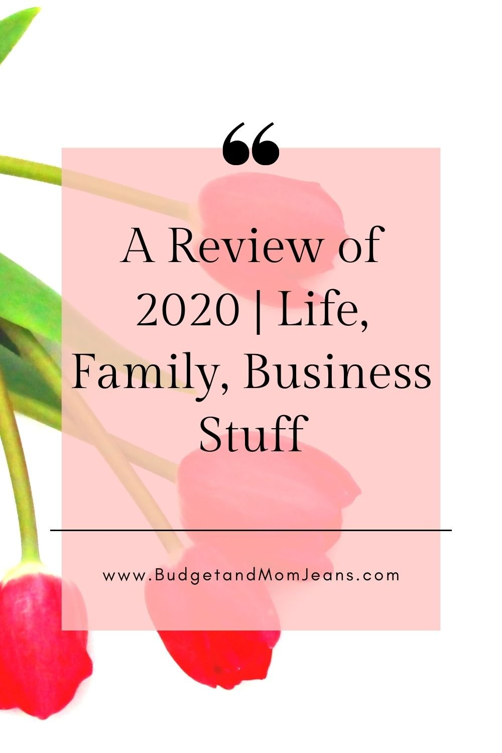 A Review of 2020 | Life, Family, Business Stuff